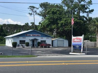 Commercial For Sale: 15034 Old Us Highway 441