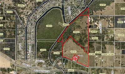 Mount Dora Residential Lots & Land For Sale: County Road 448