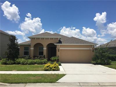 mount dora Single Family Home For Sale: 1280 Merion Drive