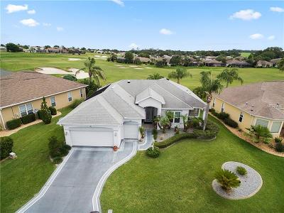 Lake County, Marion County Single Family Home For Sale: 11791 SE 173 Lane Road