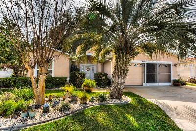 Leesburg Single Family Home For Sale: 32924 Enchanted Oaks Lane