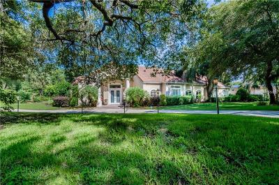 Mount Dora Single Family Home For Sale: 1416 Olympia Avenue