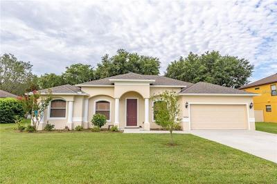 Clermont Single Family Home For Sale: 10824 Wyandotte Drive