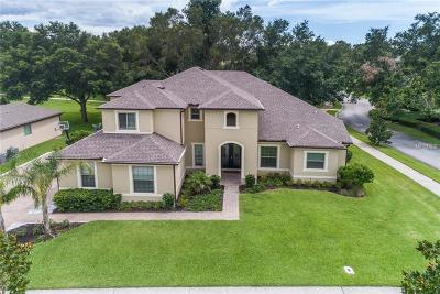 Mount Dora Single Family Home For Sale: 30437 Carthusian Place