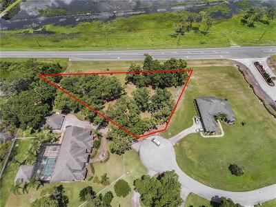 Clermont Residential Lots & Land For Sale: 21440 Tree Park Court