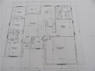 Groveland Single Family Home For Sale: 2043 Sloans Outlook Drive