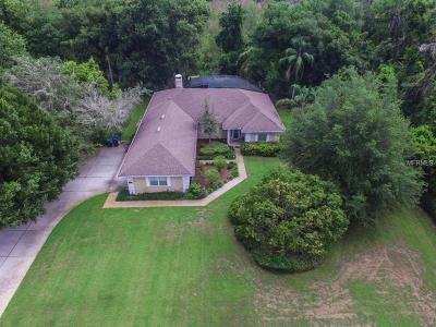 Mount Dora Single Family Home For Sale: 1209 Elysium Boulevard
