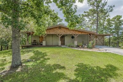 Mount Dora Single Family Home For Sale: 3015 Wolf Branch Road