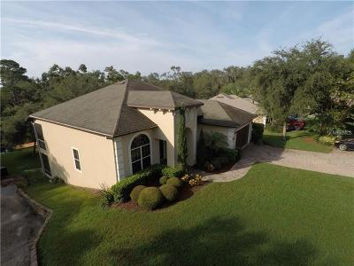 Clermont Single Family Home For Sale: 11818 Lakeshore Drive