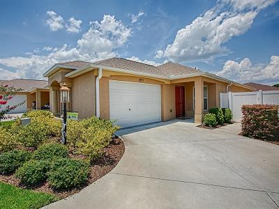 The Villages Single Family Home For Sale: 2973 Kramer Court