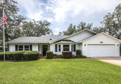 Leesburg Single Family Home For Sale: 35305 Haines Creek Road