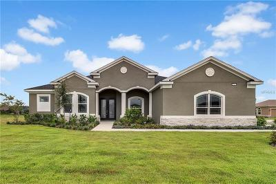 Mount Dora Single Family Home For Sale: 8702 Providence Court