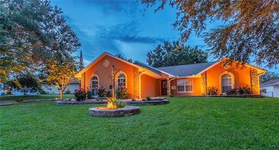 Wildwood Single Family Home For Sale: 9325 County Road 125b