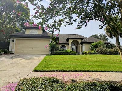 Clermont Single Family Home For Sale: 14716 Green Valley Blvd