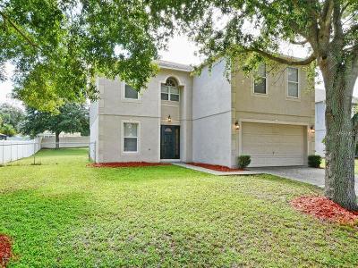 Minneola Single Family Home For Sale: 1111 Chateau Circle