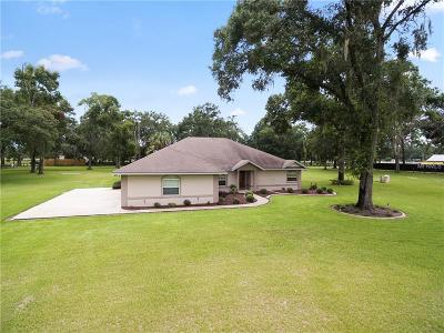 Summerfield Single Family Home For Sale: 17600 S Highway 475