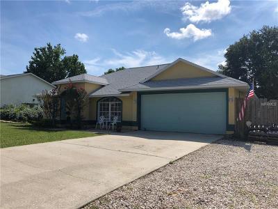 Apopka Single Family Home For Sale: 4739 Kati Lynn Drive