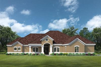 Tavares Single Family Home For Sale: Lot C21 Sawgrass Run #Lot C21