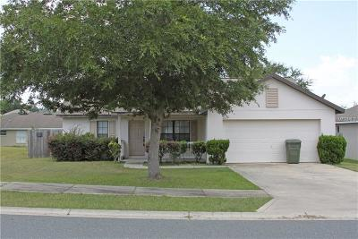 Leesburg Single Family Home For Sale: 209 Goldie Street