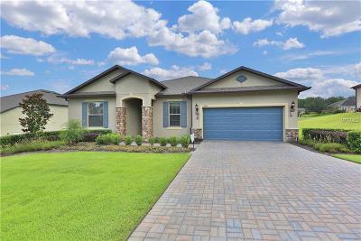 Mount Dora Single Family Home For Sale: 30243 Bretton Loop