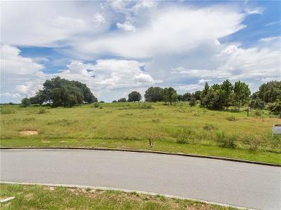 Minneola Residential Lots & Land For Sale: 3717 Ridge Run Drive