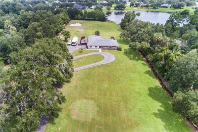 mount dora Single Family Home For Sale: 7831 Earlwood Avenue