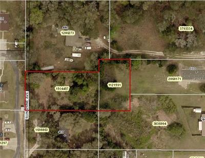 Lady Lake Residential Lots & Land For Sale: 429 Sunshine Avenue
