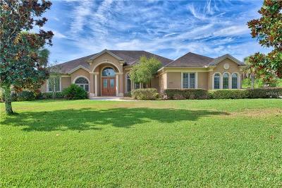 Ocala Single Family Home For Sale: 6575 S Magnolia Avenue