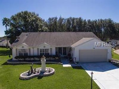 Lake County, Marion County Single Family Home For Sale: 25110 Bonnie Blue Court