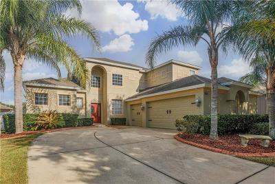 Mount Dora Single Family Home For Sale: 5459 Rishley Run Way