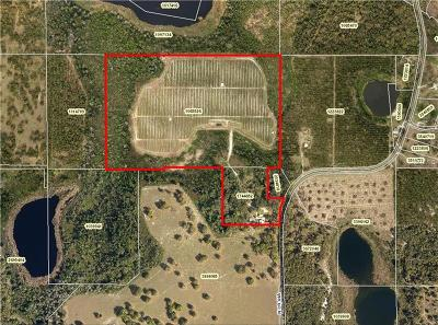Eustis Residential Lots & Land For Sale: 36111 N County Road 44a