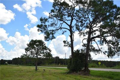 Clermont Residential Lots & Land For Sale: Pine Island Road