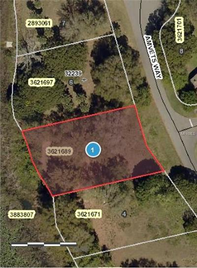 Tavares Residential Lots & Land For Sale: Amvets Way