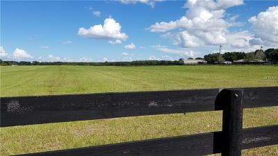 Sumter County Residential Lots & Land For Sale: Cr 237