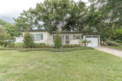 Mount Dora Single Family Home For Sale: 321 N Rhodes Street
