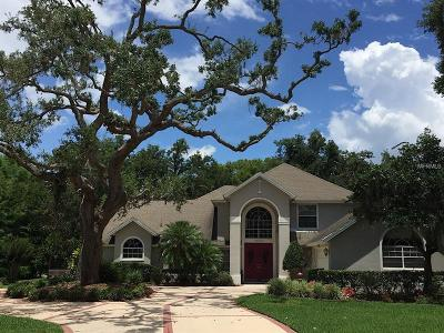 Eustis Single Family Home For Sale: 34250 Parkview Avenue