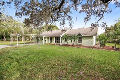 Mount Dora Single Family Home For Sale: 7647 Lake Ola Drive