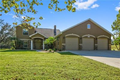 Mount Dora Single Family Home For Sale: 4307 Britt Road