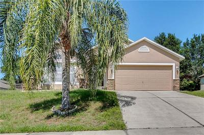 Minneola Single Family Home For Sale: 917 Jayhill Drive