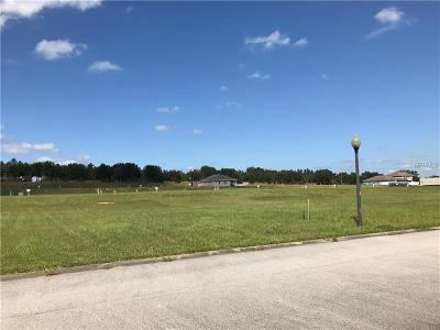 Groveland Residential Lots & Land For Sale: 3045 Sunscape Terrace