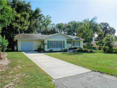 Mount Dora Single Family Home For Sale: 416 W 10th Avenue