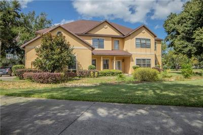 Lake County Single Family Home For Sale: 27409 Hammock View Court