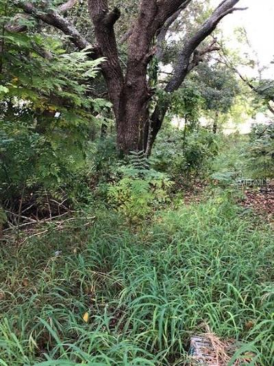 Lady Lake Residential Lots & Land For Sale: 217 Skyline Drive
