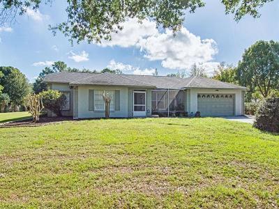 Mount Dora Single Family Home For Sale: 7706 Lake Andrea Circle