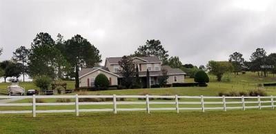 Lake County, Sumter County Single Family Home For Sale: 15700 Vista Verde Drive
