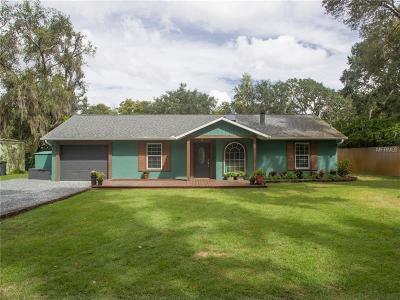 Clermont Single Family Home For Sale: 12041 Browns Canal Dr