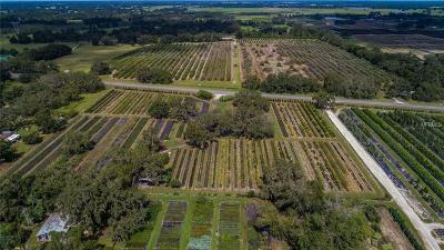Groveland Residential Lots & Land For Sale: W State Road 50