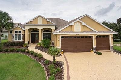 Lake County Single Family Home For Sale: 8909 Beacon Hill Avenue