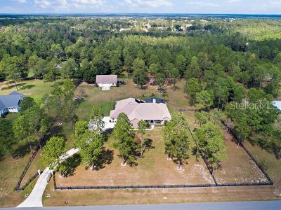 Eustis Single Family Home For Sale: 35739 Pinegate Trail