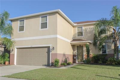 Mount Dora Single Family Home For Sale: 1681 Strathmore Circle